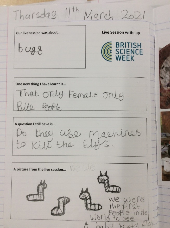 Example of a British Science week student workbook