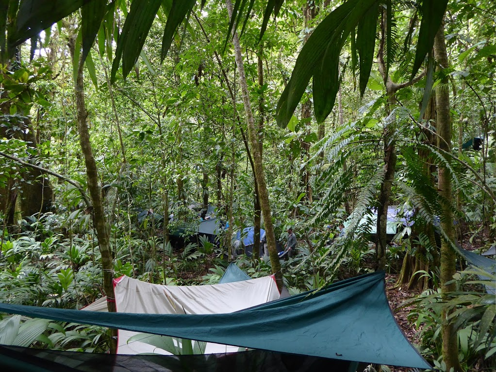 Camping in Guatemalan rainforest