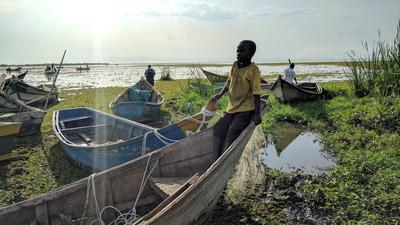 Schistosomiasis survey at Lake Albert, Uganda