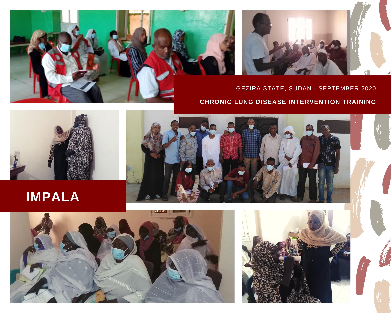 Collage of images taken during training in Gezira State, Sudan